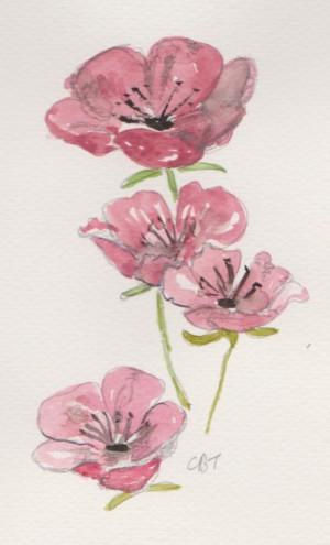 blosson 001