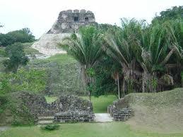 a maya 3