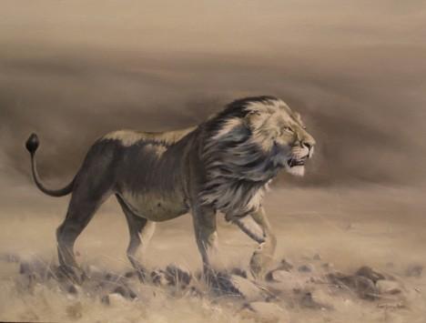 lion, blog