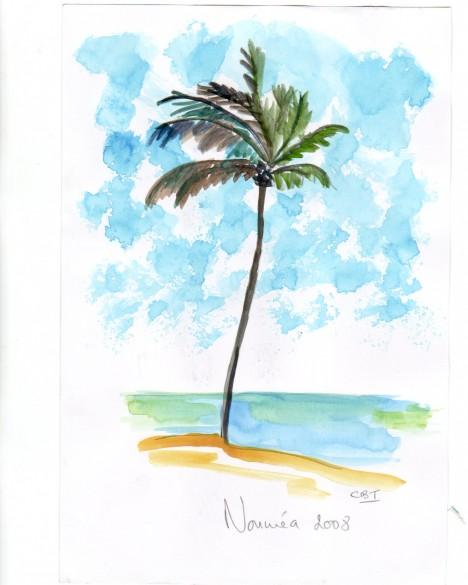 palm, Noumea 08
