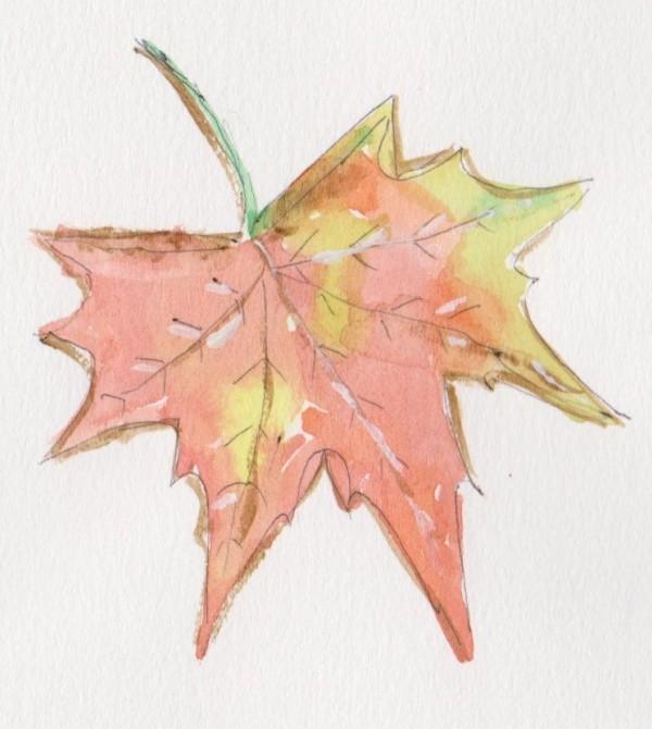 leaf 1 001
