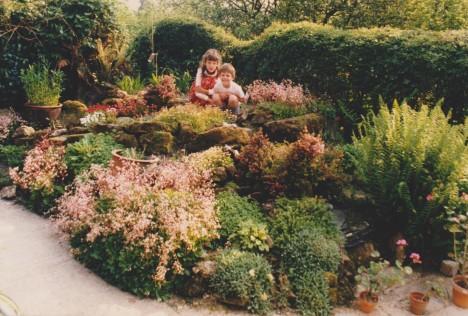 rock garden acacia 001