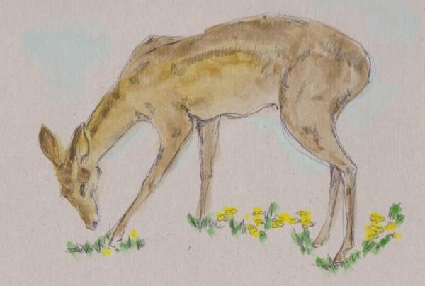2 deer 001